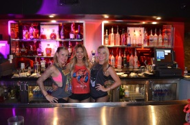 SDCC 2013 Kings of the Con Party PCD Dollhouse Bartenders