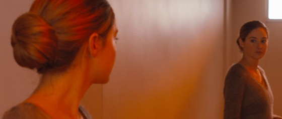Divergent Movie Teaser Reflection