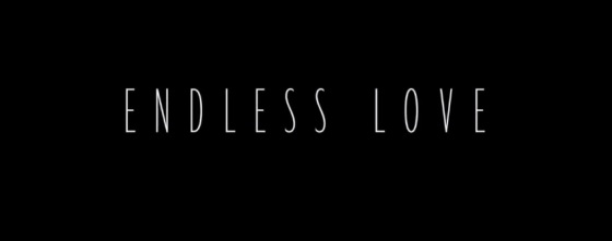 Endless Love 2014 Title Movie Logo
