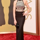 Anne Hathaway 2014 Oscars Best Dressed