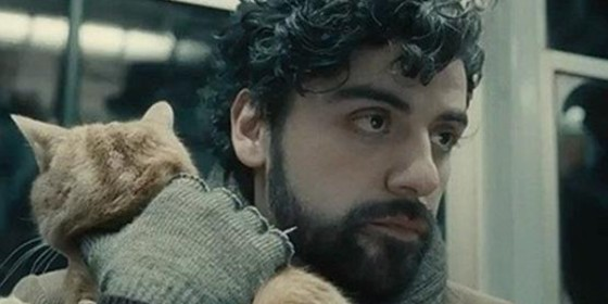 Now Available To Own The Book Thief, Inside Llewyn Davis, Titanfall, and More