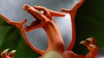 Super Smash Bros. 2014 Wii U Charizard