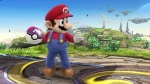 Super Smash Bros. 2014 Wii U Masterball