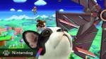 Super Smash Bros. 2014 Wii U Nintendog Assist