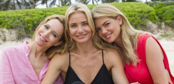 The Other Woman Box Office Results