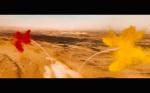 Mad Max Fury Road Comic Con Trailer Screenshot Flare