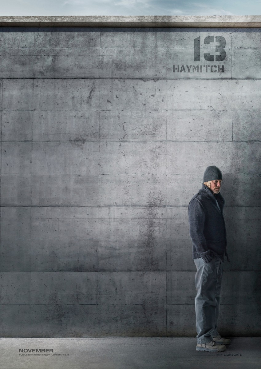 The Hunger Games Mockingjay Part 1 District 13 Poster Haymitch Abernathy