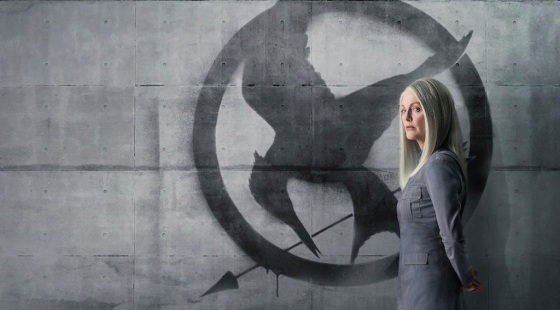 The Hunger Games Mockingjay Part 1 Viral District 13 Posters