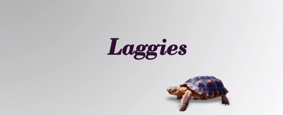 Lagies Movie Review 2014