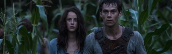 The Maze Runner 2014 Movies