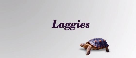 Laggies Movie Title Logo