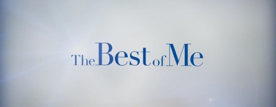 The Best of Me 2014 Movie Title Logo