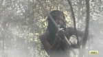 The Walking Dead Season 5 Part 2 Michonne Danai Gurira 3