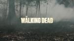 The Walking Dead Title Logo