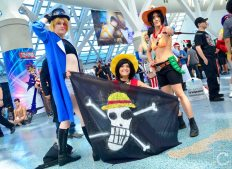 Anime Expo 2016 Cosplay 176 One Piece