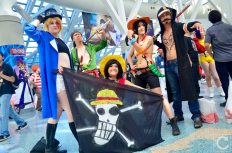 Anime Expo 2016 Cosplay 177 One Piece