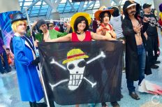 Anime Expo 2016 Cosplay 178 One Piece